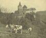100 Jahre Burgenland – Schlagzeilen von 1921 bis 1969